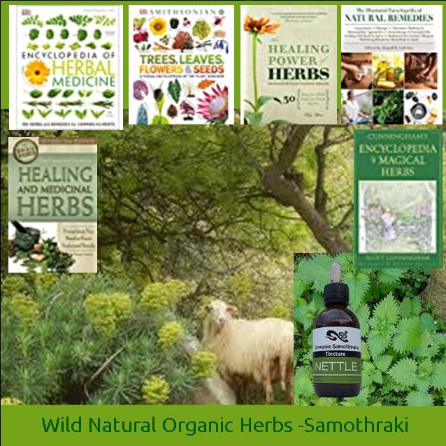 The Guide to Samothraki Plants and Herbs